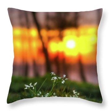 Into Dreams Throw Pillow