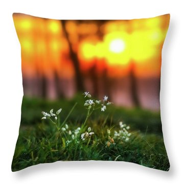 Into Dreams Throw Pillow