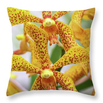 Intriguing Yellow Spider Orchids Throw Pillow