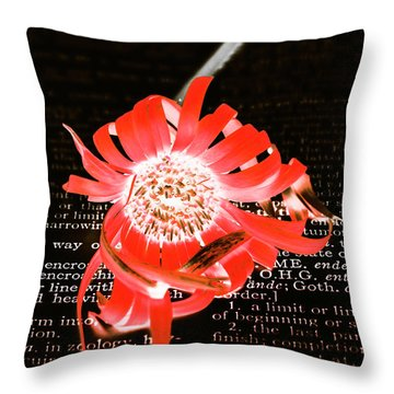 Inversion To The Mean Throw Pillow