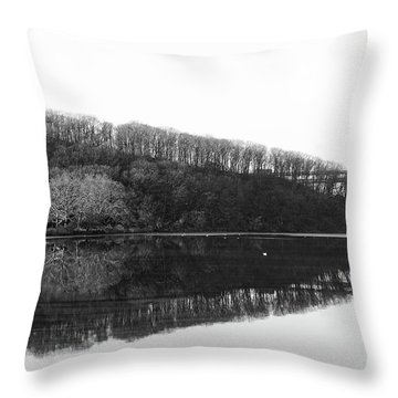 Throw Pillow featuring the photograph Inwood Reflections by Cole Thompson