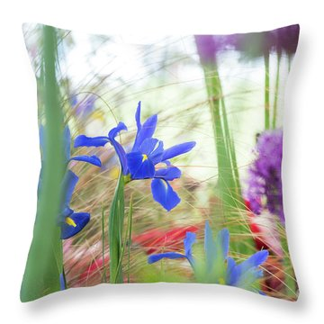 Throw Pillow featuring the photograph Iris Hollandica 'professor Blaauw' On Display by Tim Gainey
