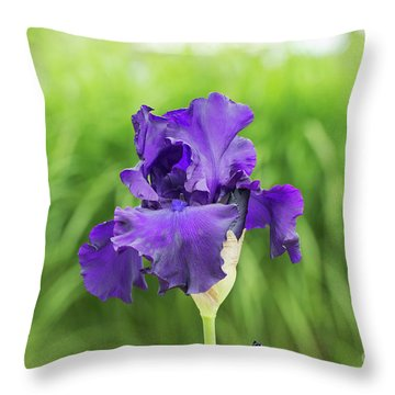 Throw Pillow featuring the photograph Tall Bearded Iris Titans Glory  Flower by Tim Gainey