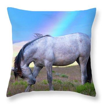 Irrefutable Proof Throw Pillow