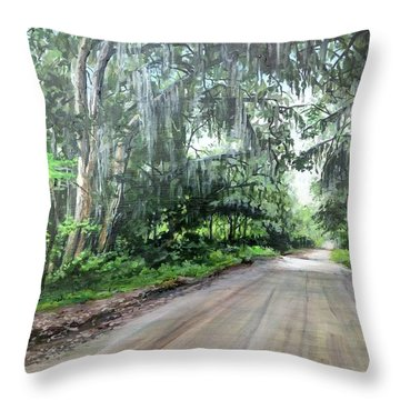 Throw Pillow featuring the painting Island Road by William Brody