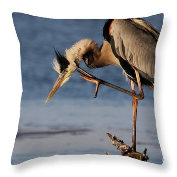 Itchy - Great Blue Heron Throw Pillow