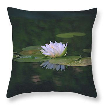 Its A Beauty Throw Pillow