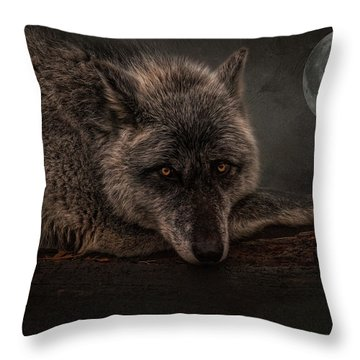 Its A Lonely Night  Throw Pillow