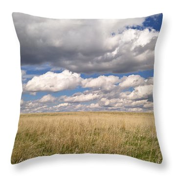 It's Amazing Here Throw Pillow