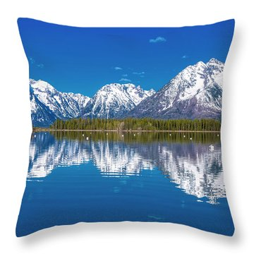 Jackson Lake Throw Pillow