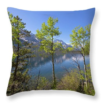 Throw Pillow featuring the photograph Jackson Lake by Sue Collura