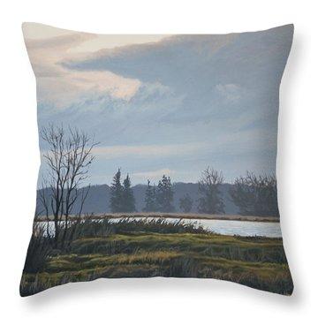 January Skies Throw Pillow