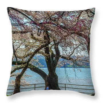 Japanese Flowering Cherry Trees Throw Pillow