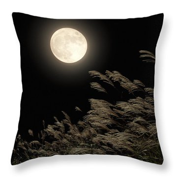 """Canvas Art Print /""""Japanese pampas grass and the moon/"""""""
