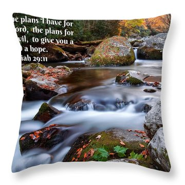 Jeremiah 29 And 11 Throw Pillow