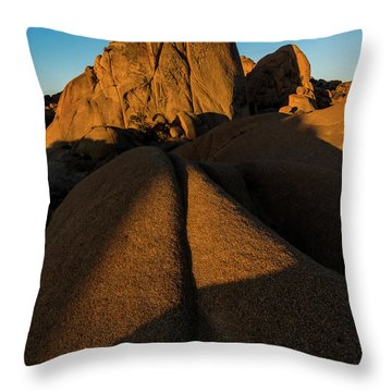 JT1 Throw Pillow