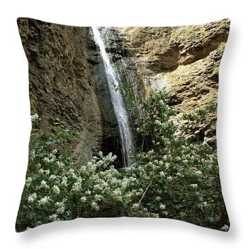 Jump Creek Falls Canyon Throw Pillow
