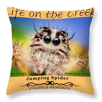 Jumping Spider Colonus Hesperus Throw Pillow