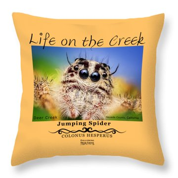 Jumping Spider Colonus Hesperus Throw Pillow