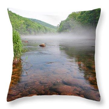 June Morning Mist Throw Pillow