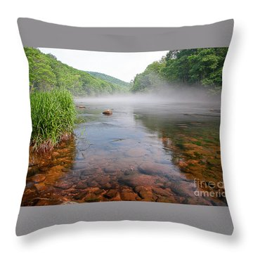 June Morning Mist Throw Pillow