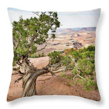 Juniper Over The Canyon Throw Pillow