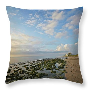 Jupiter Island Shoreline Throw Pillow