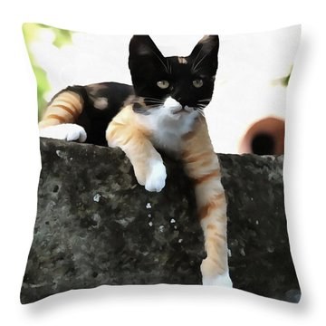Just Chillin Tricolor Cat Throw Pillow