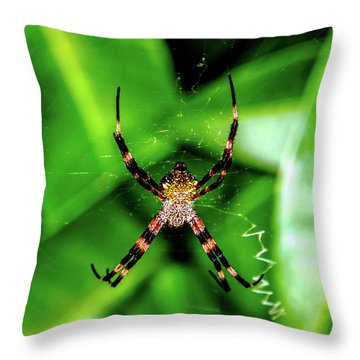 Just Hanging Throw Pillow