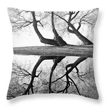 Kaloya Pond And Willow Trees Throw Pillow