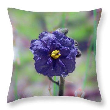 Throw Pillow featuring the photograph Kangaroo Apple, Solanum Aviculare by Elaine Teague