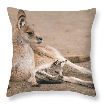 Throw Pillow featuring the photograph Kangaroo Outside by Rob D Imagery