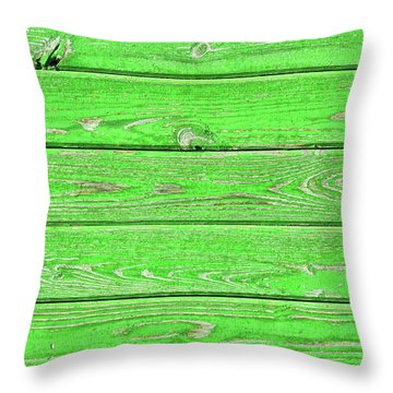 Kelly Colored Throw Pillow