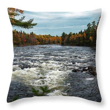 Kennebec River Throw Pillow