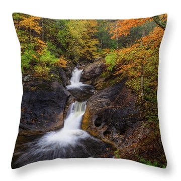 Throw Pillow featuring the photograph Kent Falls Foliage 2 by Bill Wakeley