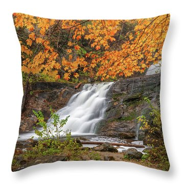 Throw Pillow featuring the photograph Kent Falls Foliage 3 by Bill Wakeley