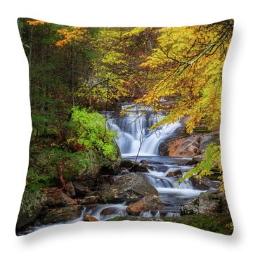 Throw Pillow featuring the photograph Kent Falls Foliage Square by Bill Wakeley