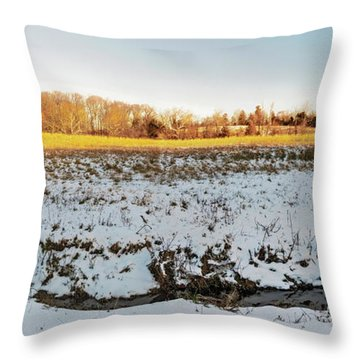 Kingsville Md Landscape Pano Throw Pillow