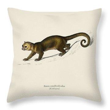 Kinkajou  Potos Caudivolvultrated By Charles Dessalines D  Orbigny  1806 1876 Throw Pillow