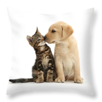 Throw Pillow featuring the photograph Kisses For My Darling by Warren Photographic