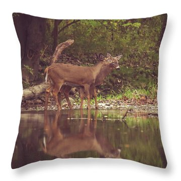 Throw Pillow featuring the photograph Kissing Deer Reflection by Dan Sproul
