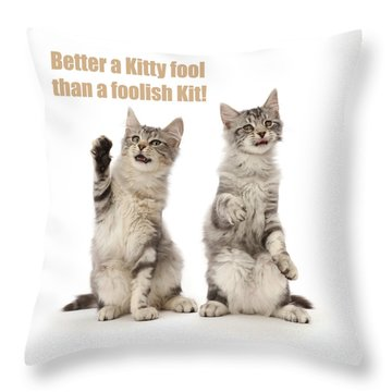 Throw Pillow featuring the photograph Kitty Fools by Warren Photographic