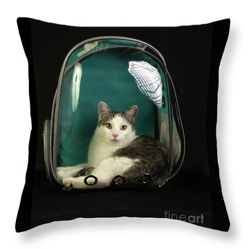 Kitty In A Bubble Throw Pillow