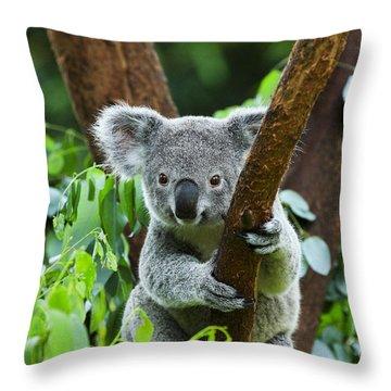 Endangered Throw Pillows