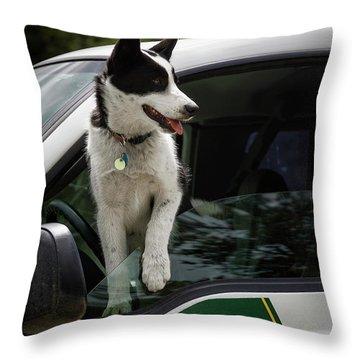 Throw Pillow featuring the photograph Koda by Brad Allen Fine Art