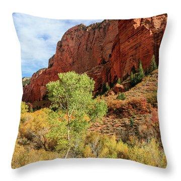 Kolob Canyon 1, Zion National Park Throw Pillow