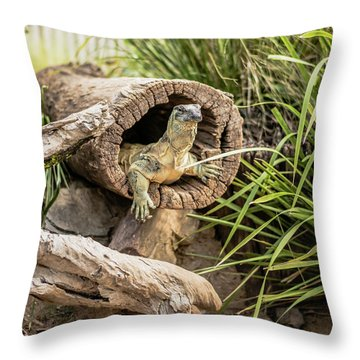 Lace Monitor During The Day. Throw Pillow