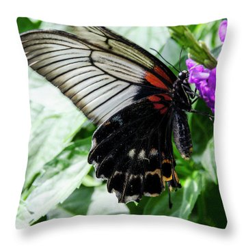 Lacey Elegance Throw Pillow
