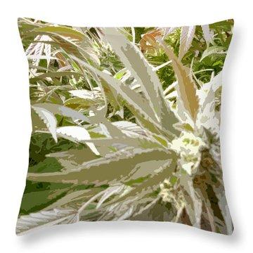 Throw Pillow featuring the photograph Ladyflower Hemp #1 by Ahma's Garden