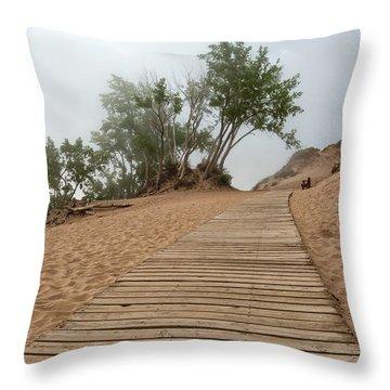 Lake Michigan Overlook 3 Throw Pillow